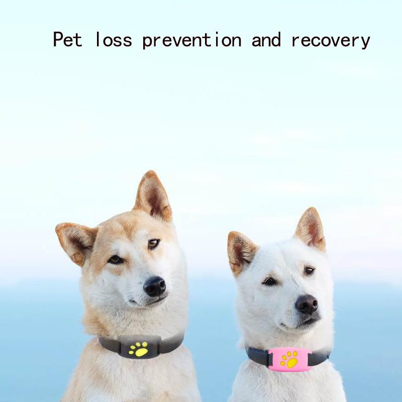 Rastreador de mascotas localizador de perros GPS collar de mascotas Antipérdida artefacto de rastreo y posicionamiento de gato pequeño seguimiento
