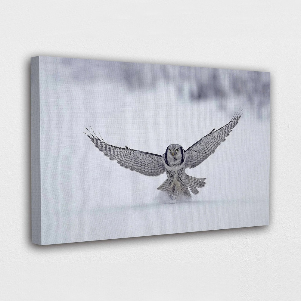 Wall Art Heathrow Owl Canvas Painting HD Printed Snow Landscape Poster Home Decor For Living Room Modular Animal Pictures Frame