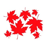 1512 2cm maple fall decal car stickers fashion personality creativity classic attractive car styling jdm