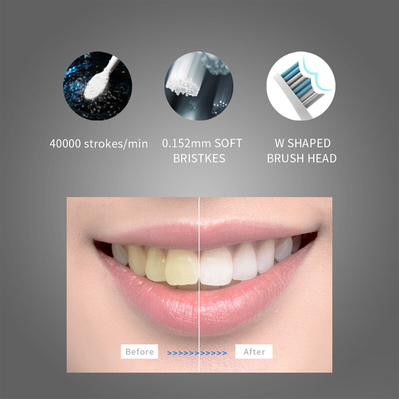 Seago Sonic Electric Toothbrush USB Rechargeable Toothbrush 4 Mode USB Charging Travel Toothbrush with Brush Heads SG551 enlarge