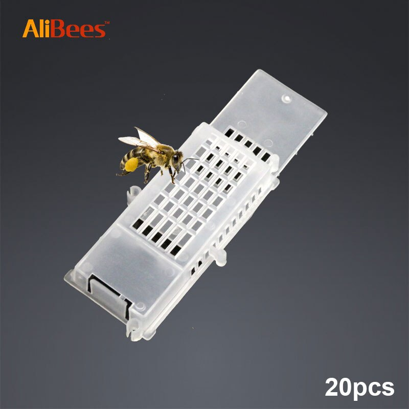 Abeja de jaula para abeja reina de volumen celular empujar transporte apicultura herramienta suministros y herramienta de jardín para apicultor la apicultura del producto