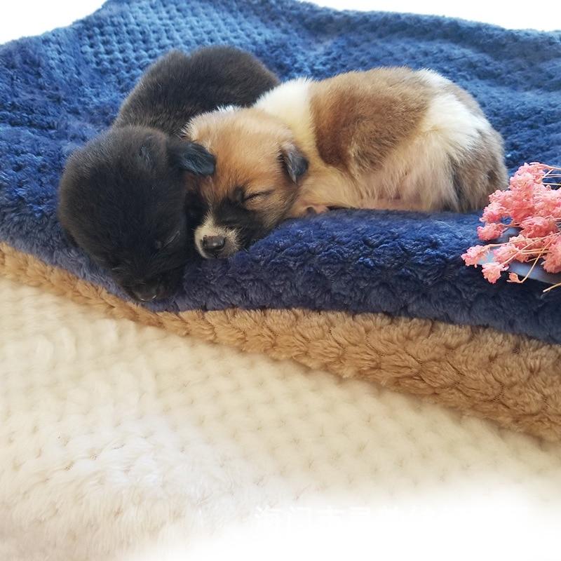 Espesar perro Otoño e Invierno Golden Retriever de peluche perro perrera cojín edredón gato manta para mascotas