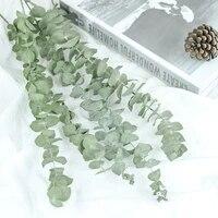 Feuilles deucalyptus naturelles  Branches de fleurs sechees  ornement de palmier reel pour bricolage  accessoire de tournage de mariage  fournitures de decoration pour la maison