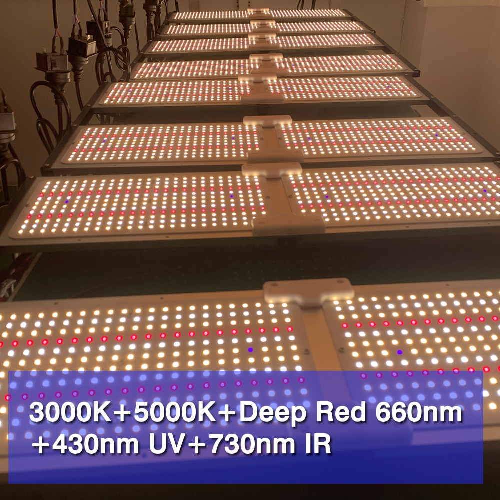 LED Grow Light Quantum Tech V6 Board Samsung LM301H Free DIY 240W 480W 960W 1200W Greenhouse Indoor Plants Lamp With Fan Cooling enlarge