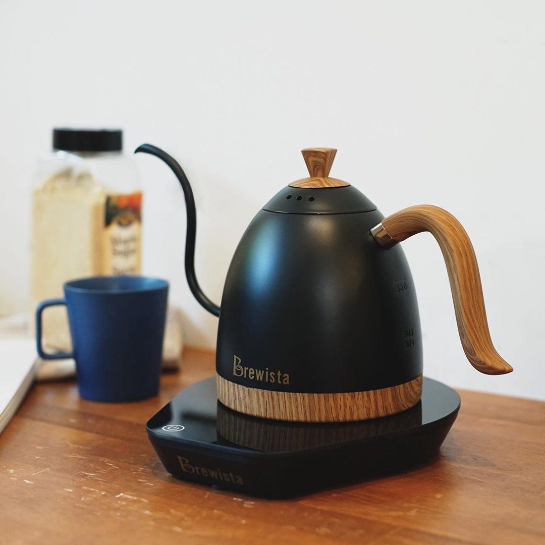 بريستا الحرفي متغير درجة الحرارة غلاية رقمية 220 فولت الذكية Gooseneck غلاية بوروفر اليد يخمر إبريق قهوة