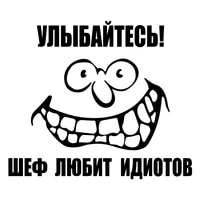 sf26922017cm inscription smile the boss loves idiots funny car sticker vinyl decal silverblack car auto stickers for car