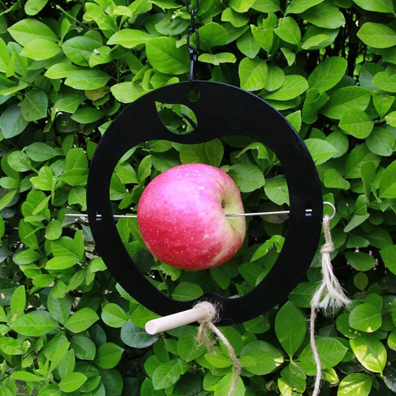 Hummingbird Feeder Fruit Feeder For Outdoor Garden Yard Tree Creative Decor Oriole Bird Feeder