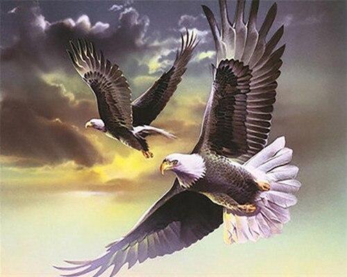 El Águila está despertando dibujos artísticos diy, pinturas al óleo por números con pintura acrílica