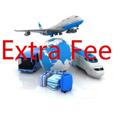 Customer Payment Repay Link