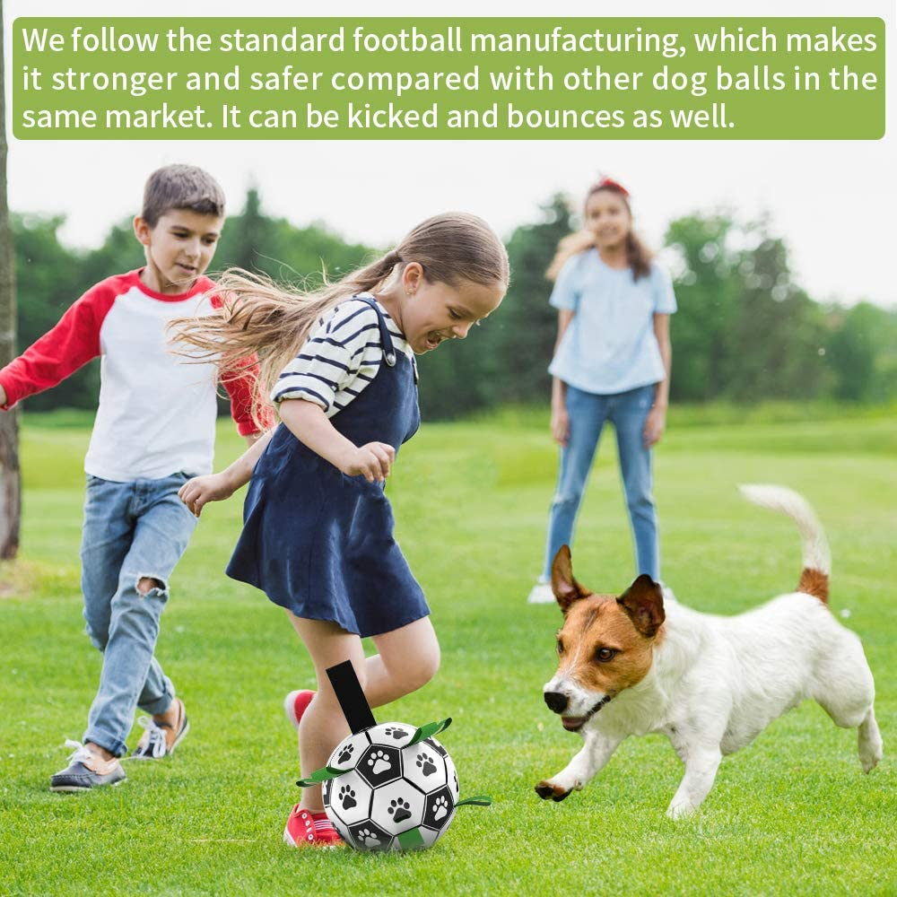Soccer And Inflator Football Toy For Dogs To Play Image
