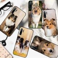 sheltie dog cute animal phone case for huawei honor mate p 10 20 30 40 i 9 8 pro x lite smart 2019 nova 5t