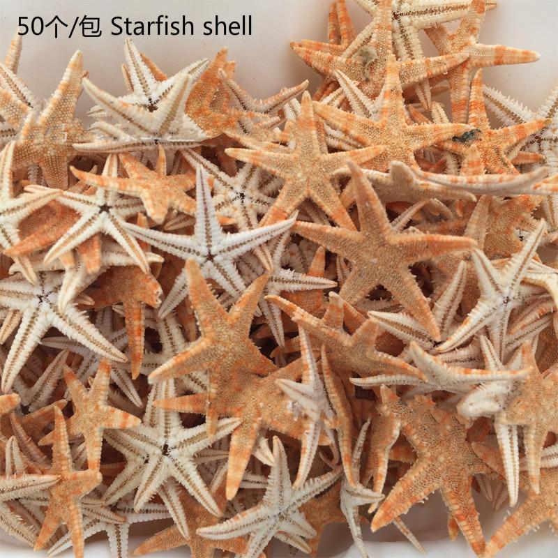 50 pcs 2-3cm starfish shell beach crafts natural wedding decoration home furnishings