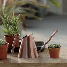 Kleine Indoor Gieter Voor Huis Planten Rvs Gieter Met Lange Uitloop