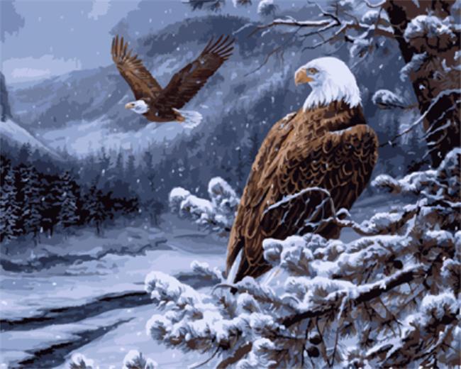 Cuadro con marco DRAWJOY cuadro de águila y caligrafía DIY pintura por lienzo con números para colorear por números