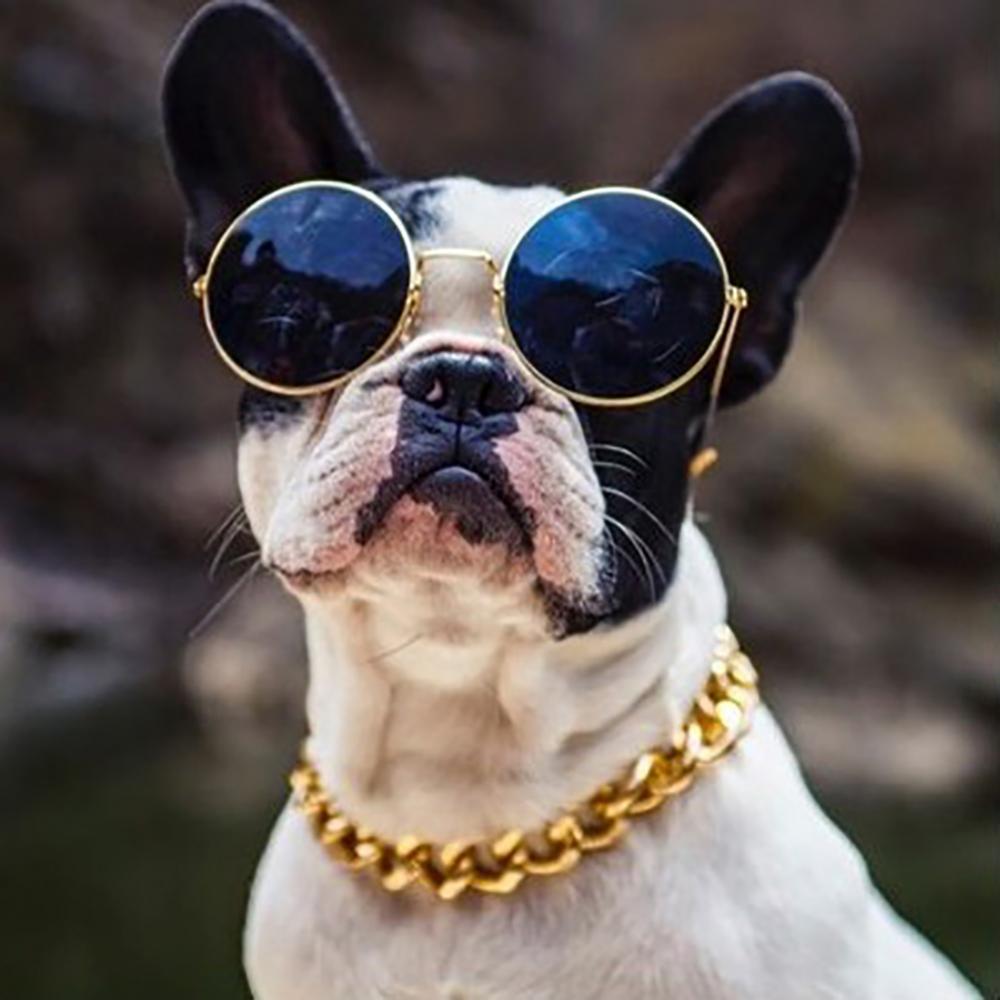 80% Hot Sales!!! 36cm/45cm Adjustable Dog Cat Punk Chain Collar Lead Wide Necklace Pet Accessory