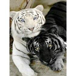 5d completo diy daimond pintura ponto cruz preto & branco tigre 3d pintura diamante redondo strass pintura bordado diamante