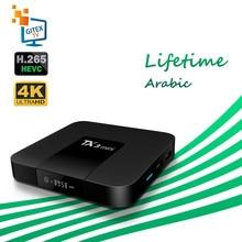 Freies Ewig IPTV TX3 Mini Android 7,1 Smart TV Box Arabisch Französisch Belgien IPTV Lebensdauer KO Große Biene TV Box kein kanal enthalten