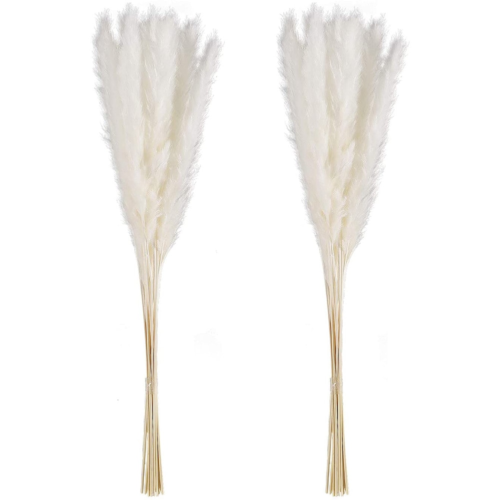 Dried Reed Flowers Pampas Grass Artificial Natural Dried White Simulation Bouquet For Wedding Home Photography Decor 30PCS