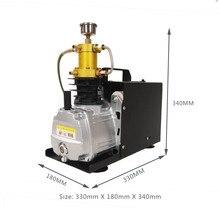 4500Psi pcp compresseur dair haute pression pcp pompe pour fusil à air comprimé pneumatique fusil gonflable 220V