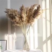 Bouquet de fleurs pour mariage  couleur claire  herbe naturelle sechee  magnifique roseaux  decoration de mariage pour la maison  noel