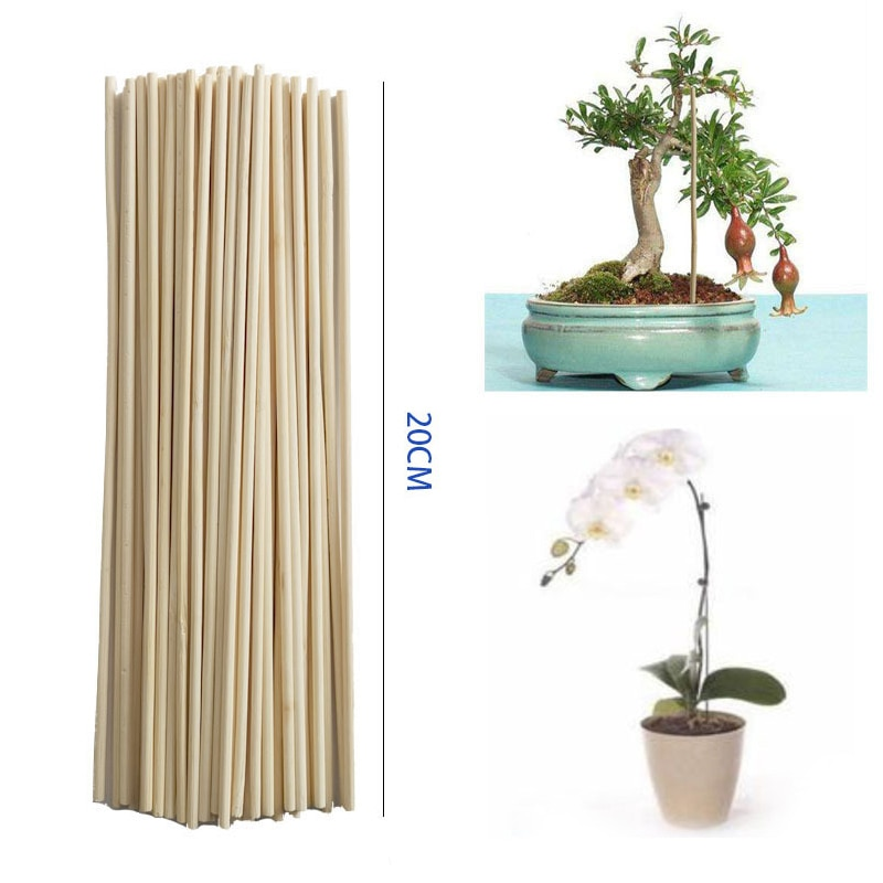 Novo 50 pçs bambu vara planta crescimento haste de apoio pequeno bonsai ramo videira jardim suprimentos
