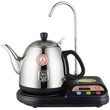 Bouilloire électrique/théière micro-processeur service à thé avec contrôle de température