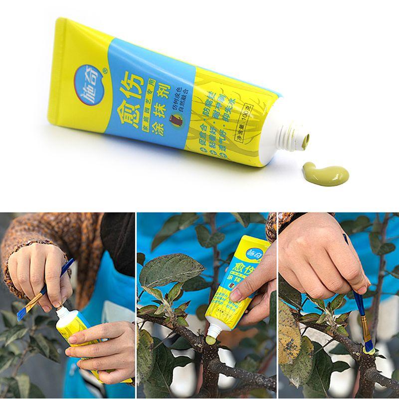 Sellador compuesto de poda con cepillo Q1FD, 100g, árbol, bonsái, pasta