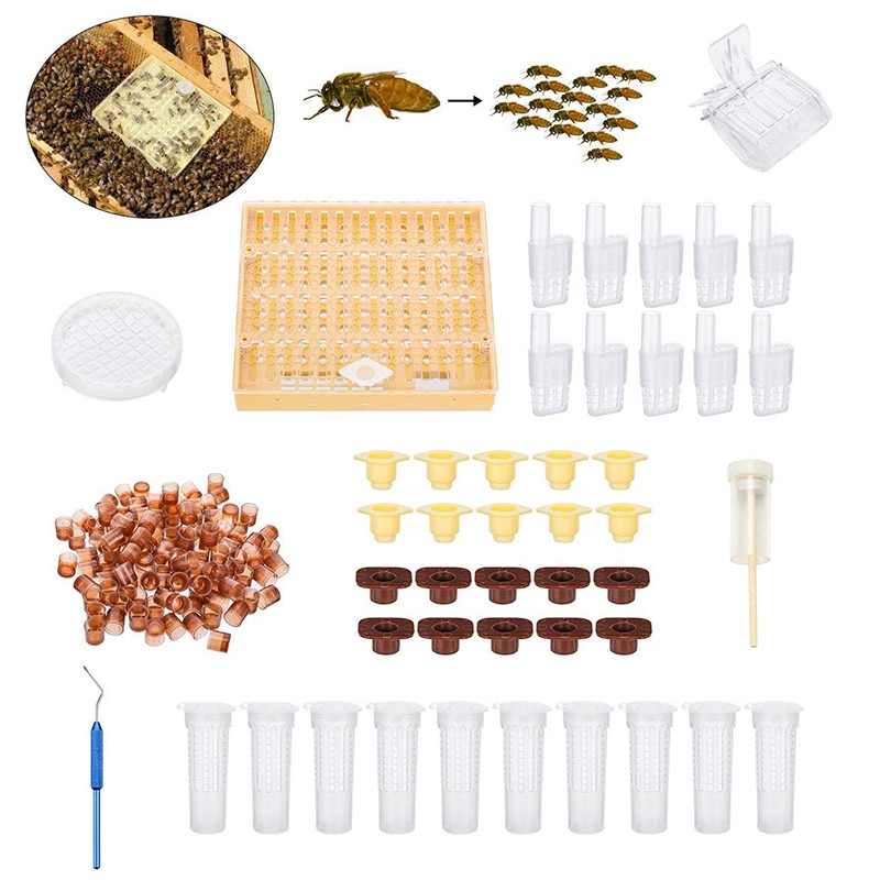 Greenvive Queen Rearing System Queen Bee Breeding Set Cultivating Box 110pcs Plastic Bee Cell Cups Cup kit Queen Cage недорого