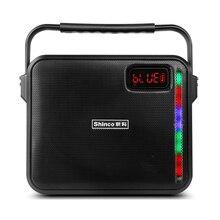 Haut-parleur karaoké Portable avec poignée et système de haut-parleurs Bluetooth PA avec Microphone sans fil UHF, télécommande