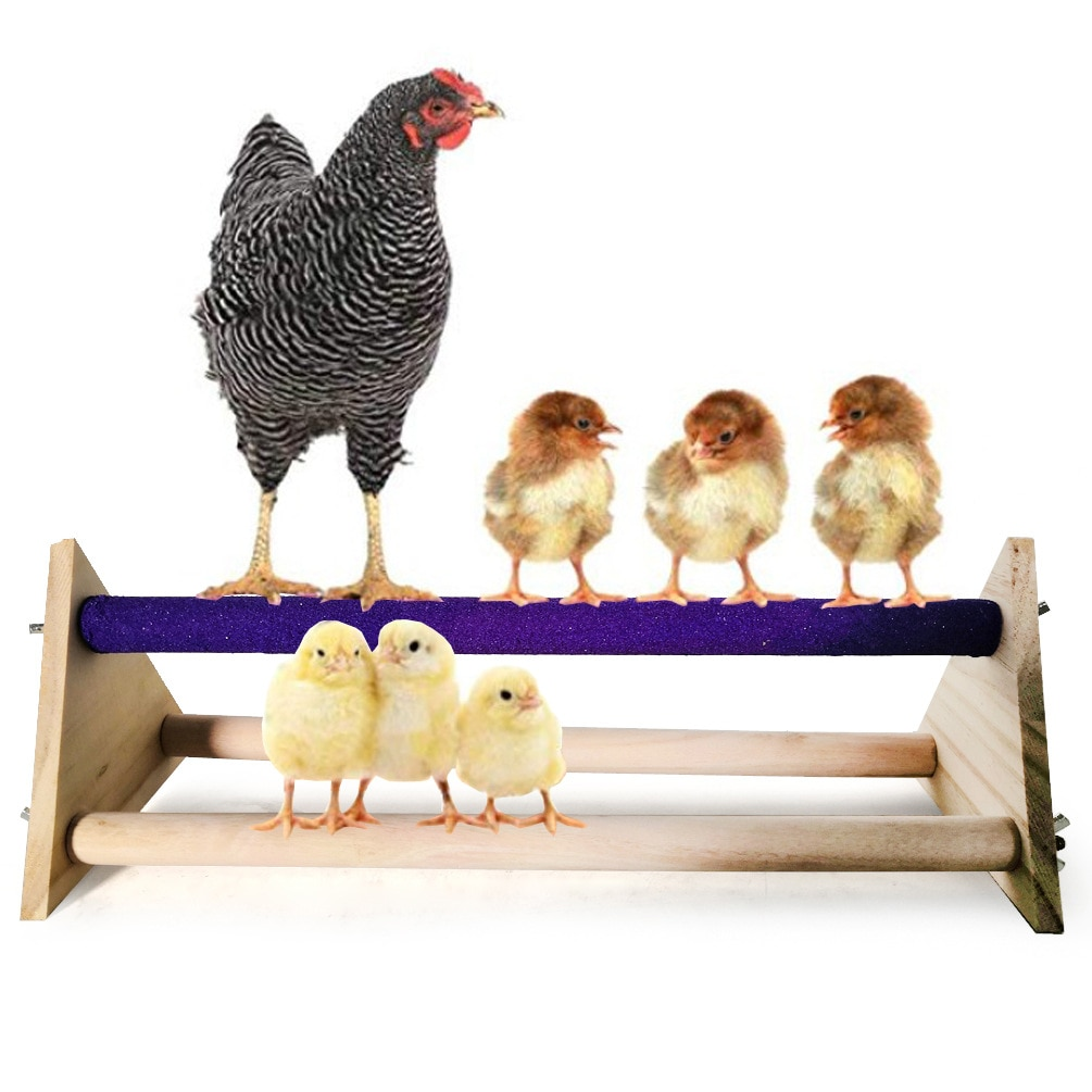 Grandes soportes para loros mascota pollo triangular Scrub soporte grande Gallo gallina soporte Amazon explosión modelos