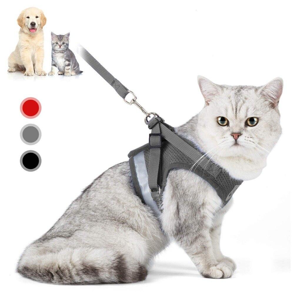 Conjunto de arnés y correa de gato ajustable reflectante arnés de gato suave acolchado chaqueta Chihuahua arnés tipo chaleco para perro