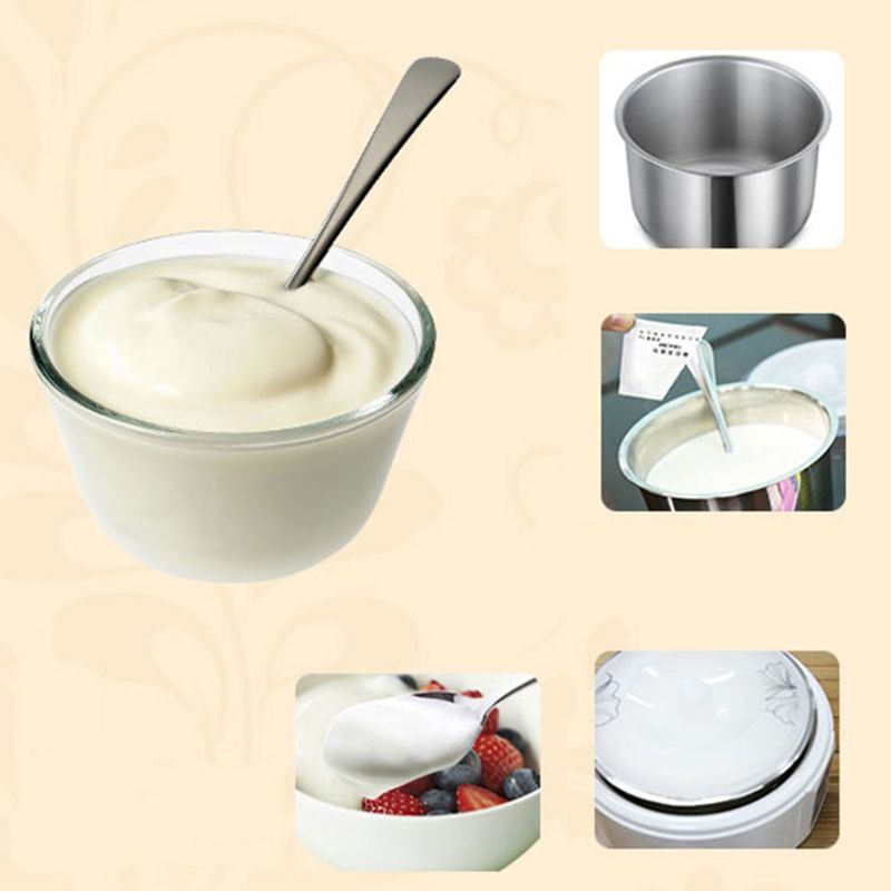 Jogurt drożdżowy Starter naturalny 5 rodzajów probiotyków Home Made Lactobacillus Maker 50JD