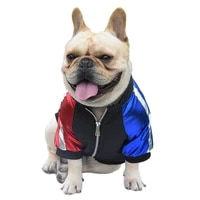 fashion pet dog two legged clothes new french bulldog casual bee pattern pet jacket handsome teddy dog pet outfit