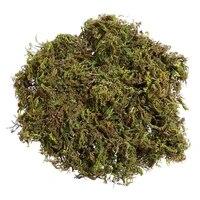 Mousse artificielle de Lichen  3 paquets  Simulation de fausses plantes vertes pour decoration de Patio de jardin de maison  mousse artificielle  environ 60g