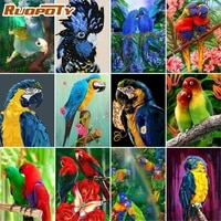 RUOPOTY     peinture par numeros pour adultes et enfants  dessin de perroquet  Animal  coloriage sur toile  decoration de maison