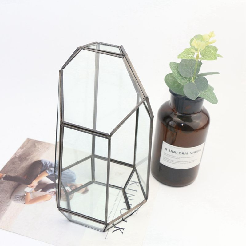 Caja de plantas de Terrario de aire geométricas de vidrio Irregular de mesa interior de altura de pulgadas 634D