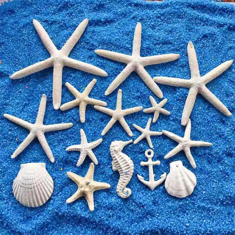 Estrella de mar blanca acuario decoración de Adorno para acuario arena dólares océano mixto