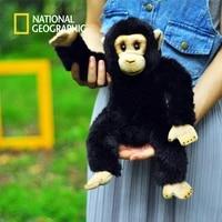 the simulation toys 23cm plush monkey doll stuffed chimpanzee kawaii childrens birthday gift with tag plush stuffed animal