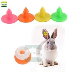100 conjuntos de orelha de coelho tag palavra tag de orelha etiqueta de orelha de coelho brincos veterinários tag de orelha de raposa marten tag de orelha redonda pequena etiqueta de orelha de animal