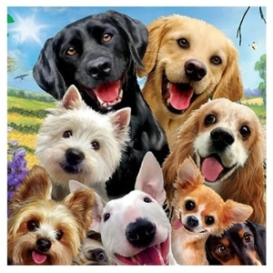 """DIY Diamond Painting Full Round Drill """"Dog"""" 3D Embroidery Cross Stitch Gift Home Decor Gift"""