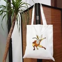 the last airbender designer handbags customizable logo bag womens shopper 2021 shoper bags printed woman luxury handbag canvas