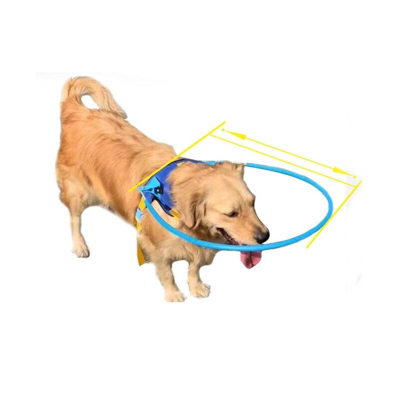 Arnés de aureola seguro para mascotas, anillo anticolisión para perros ciegos, arnés de perro guía de protección para animales