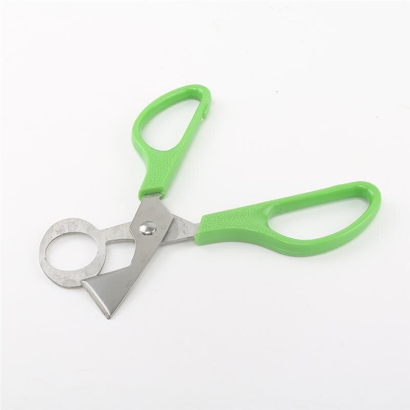 Pombo codorna ovo scissor pássaro cortador abridor ferramenta de cozinha clipper venda conchas tesoura biscoito charuto lâmina aço inoxidável