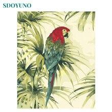 SDOYUNO 60X75cm rama kolorowe latające papugi malowanie numerami diy malowanie według numerów dla dorosłych dekoracje ścienne na płótnie malarstwo