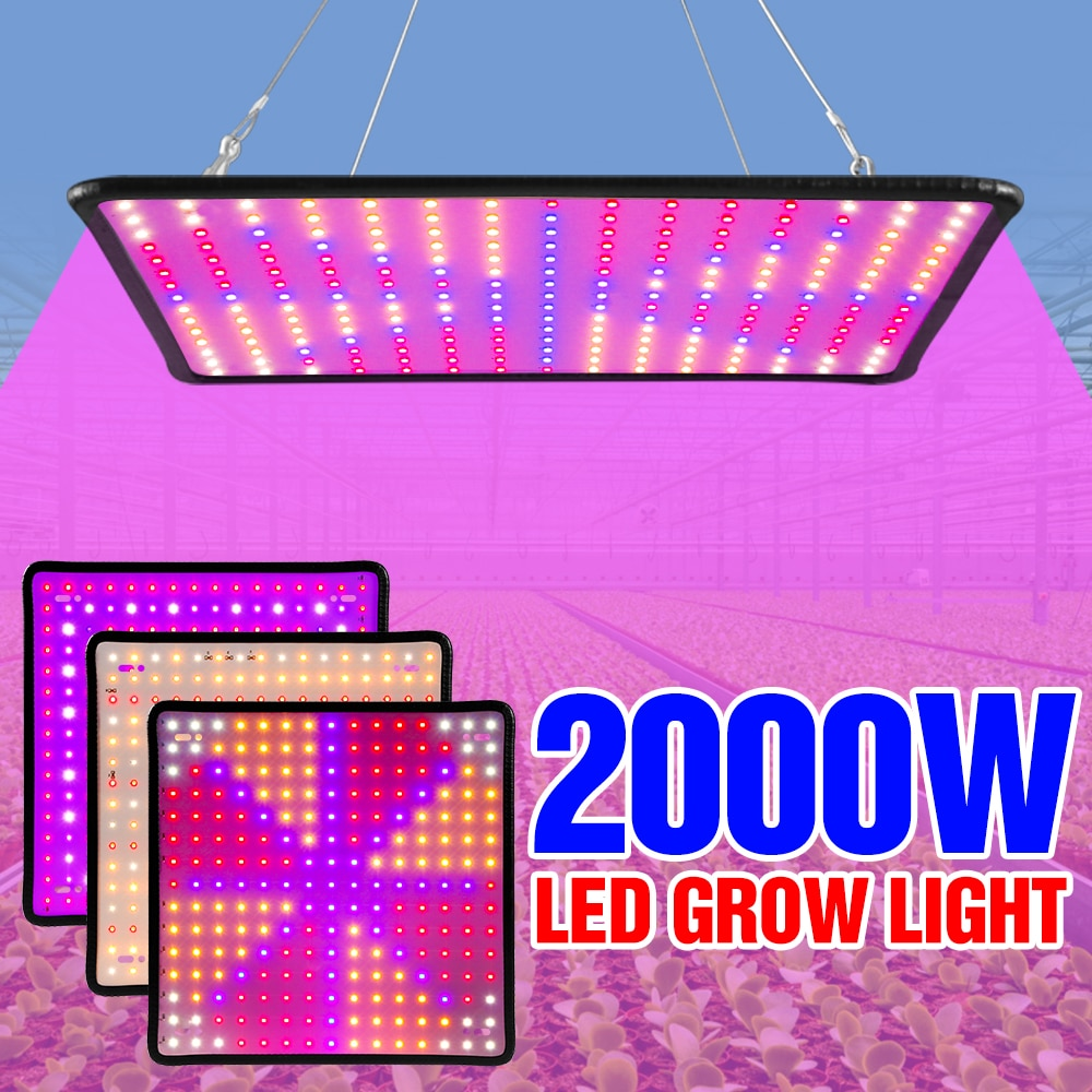 grow tent box for indoor hydroponics greenhouse plant lighting tents 60 80 100 cm growing tent 2000W LED Grow Lights 220V Phytolamp For Plant LED Indoor Lighting 110V Plants Seeds Bulb Hydroponics LED Greenhouse Growth Tent