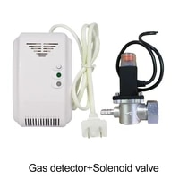 110 220vac standalone combustible gas leaking alarm detector security kitchen natural gas leak sensor electric magnetic valve