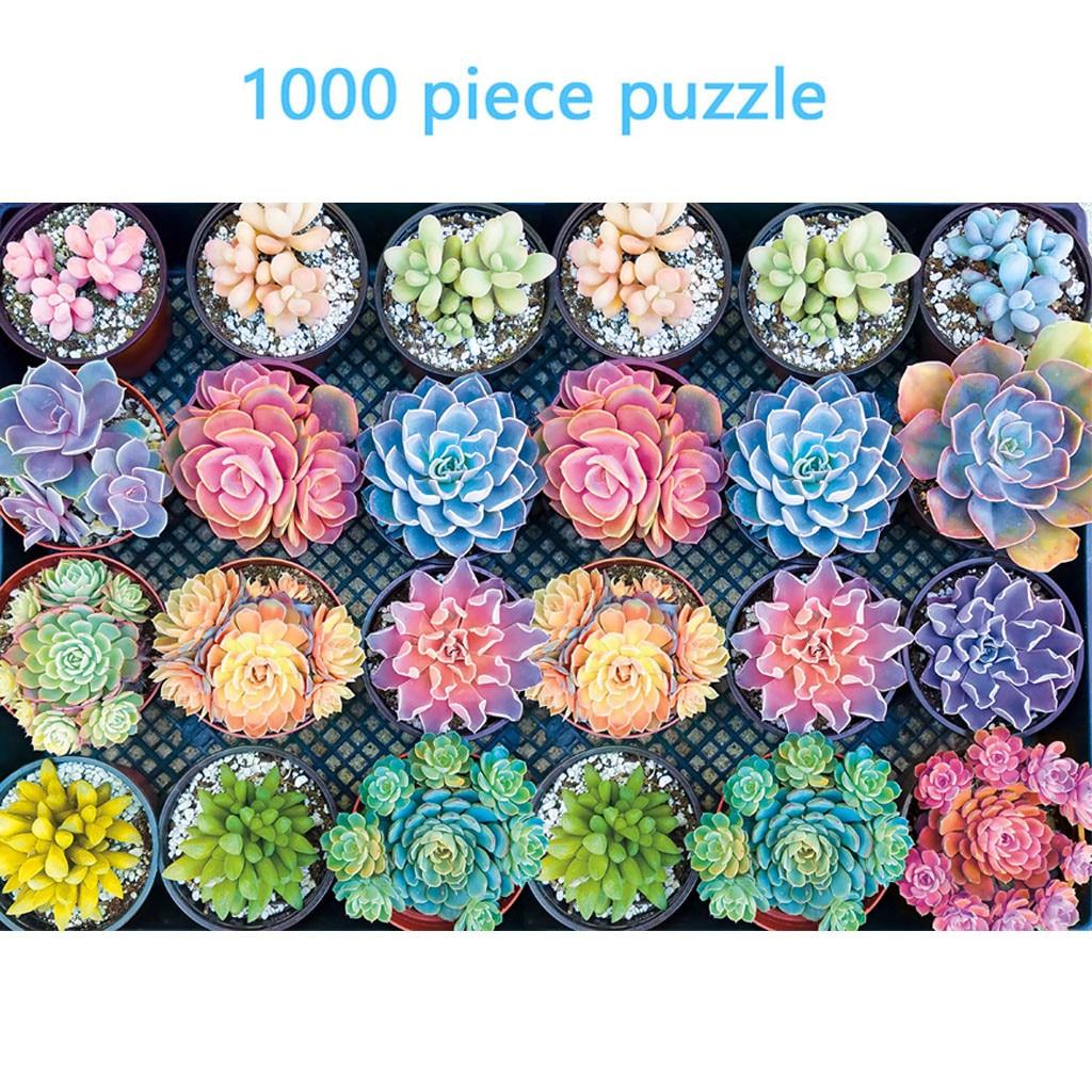 Rompecabezas de plantas suculentas de 1000 piezas, rompecabezas grande para niños y adultos, juego familiar para niños, juguete educativo con patrón de regalo de vacaciones, Jigsaws M140 #