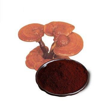500-1000 gramos hongo reishi orgánico polvo roto de la Gore 98% romper la pared