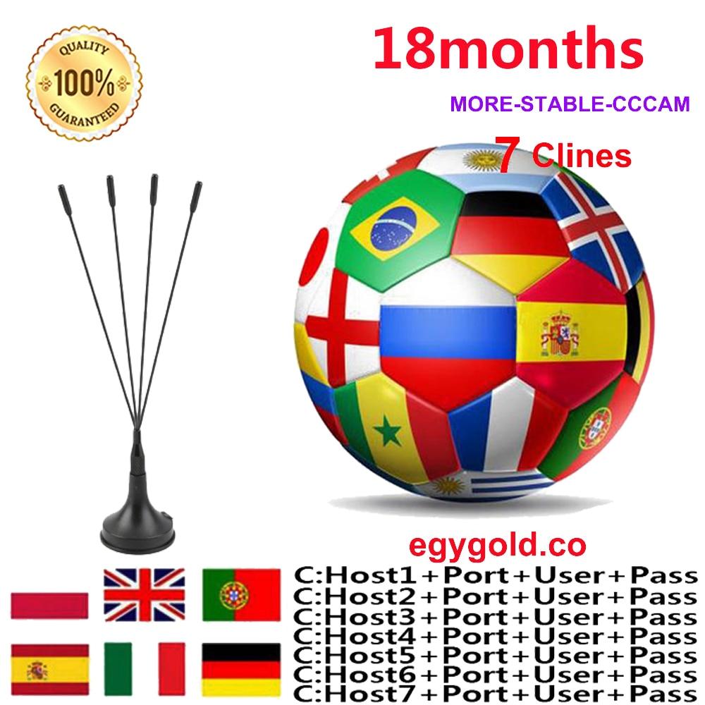 1 Year Europe Cccam Clines Egygold Server For SPAIN Portugal Germany Poland Ccams For Satellite Receiver GTmedia V8 V9 Freesat