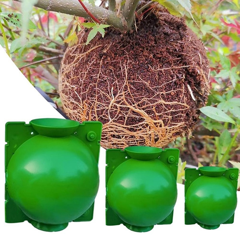 1pc Plant High Pressure Box Rooting Ball Grafting Tools Growing Breeding Case For Garden